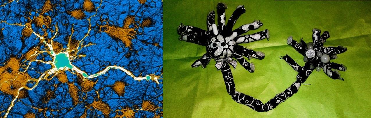Peluche neurone montage