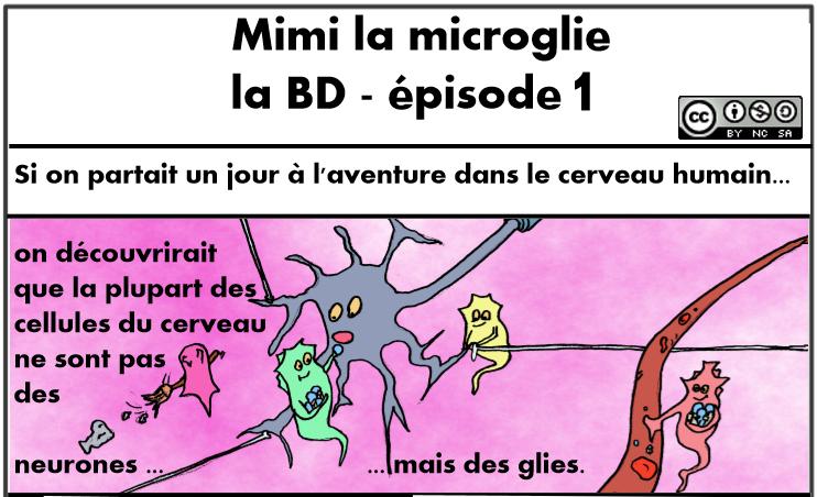 BD Web 1st